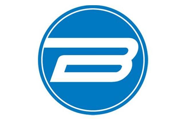 Bergmans Auto Group image
