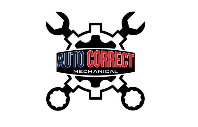 Auto Correct Mechanical image