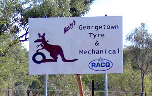 Bushy's Georgetown Tyre & Mechanical image